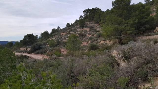 imagen 1 de Venta de finca rústica en Mora de Ebre