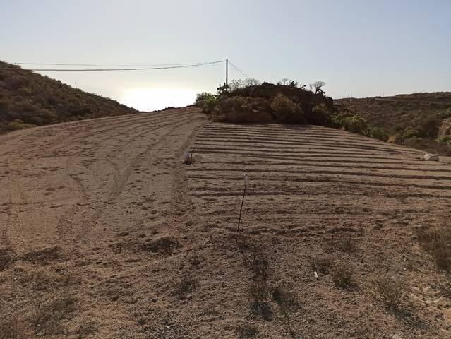 imagen 1 de Venta de terreno rústico en Fasnia (Tenerife)