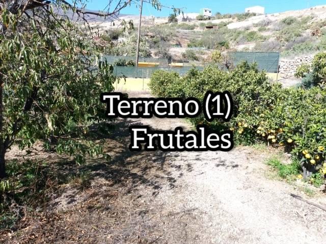 imagen 1 de Venta de finca urbana con vivienda en La Zarza (Tenerife)