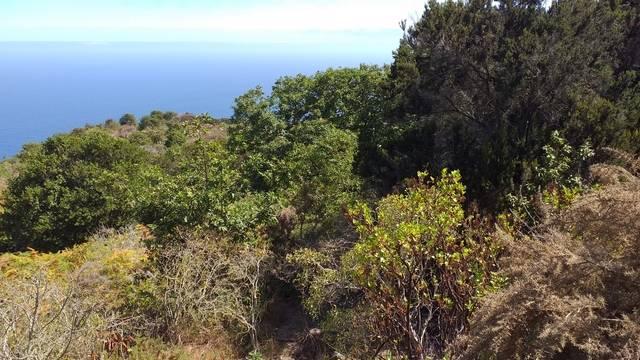 imagen 1 de Venta de terreno con bonitas vistas en Garachico (Tenerife)