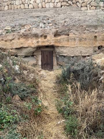 imagen 1 de Venta de finca con charca y cueva en Fasnia (Tenerife)
