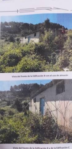 imagen 1 de Venta de finca con frutales y casa a reformar en Icod de los vinos (Tenerife)