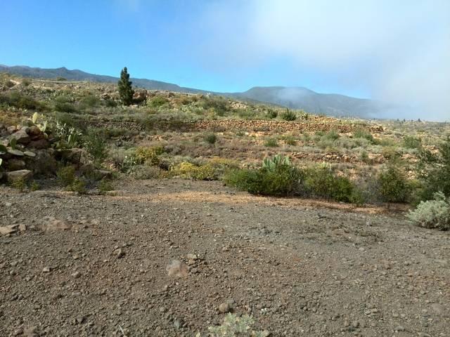 imagen 1 de Venta de finca rústica en Arico con vistas al mar y la montaña (Tenerife)