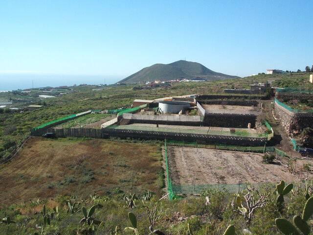 imagen 1 de Venta de finca en Granadilla de Abona (Tenerife)