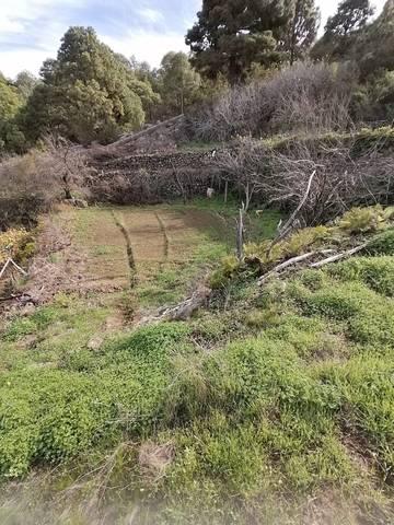 imagen 1 de Venta de terreno rústico cn cuarto de aperos en Icod de los Vinos (Tenerife)