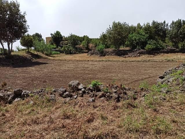 imagen 1 de Venta de terreno rústico en Garachico (Tenerife)