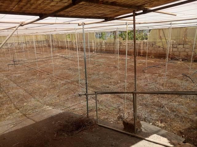 imagen 1 de Venta de invernadero en San Cristóbal de la Laguna