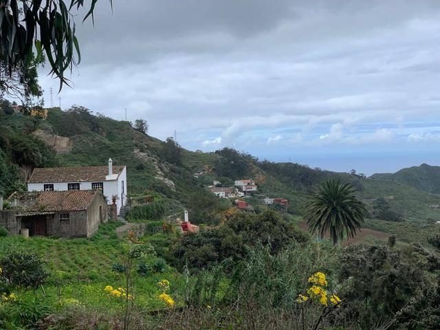 imagen 1 de Venta de finca con casa de aperos en Tegueste (Tenerife)