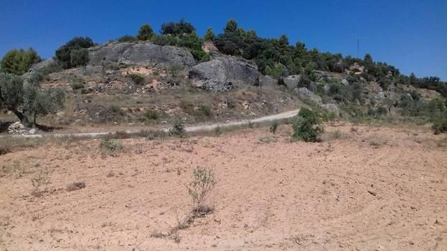 imagen 1 de Venta de finca para cultivo de trufa en Teruel