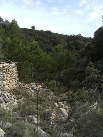 imagen 1 de Venta de finca rústica con pinar y truferas en Teruel