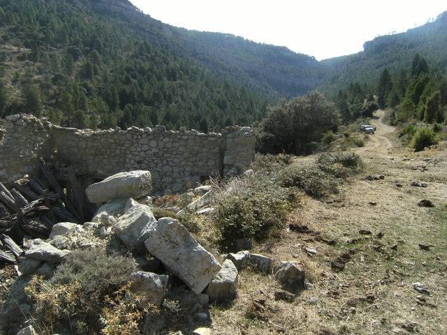 imagen 1 de Venta de finca de pinar, pastos y truferas en Teruel