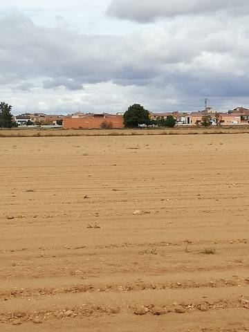 imagen 1 de Venta de finca con nave en Villarquemado (Teruel)