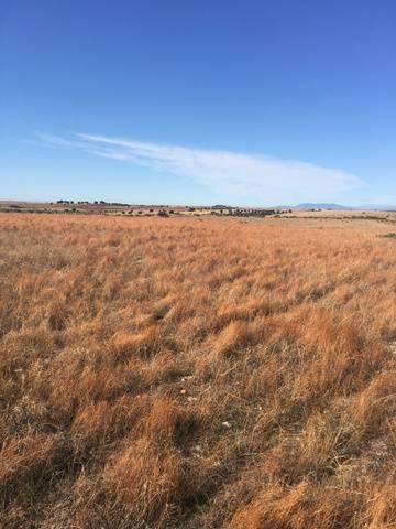 imagen 1 de Venta de terreno en Toledo
