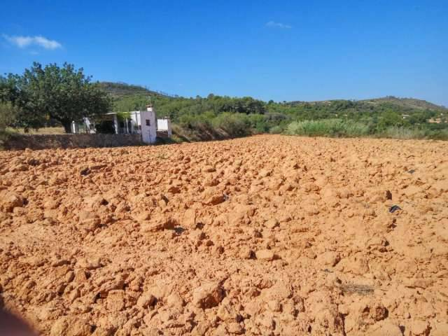 imagen 1 de Venta de finca de regadío con caseta en Turis (Valencia)