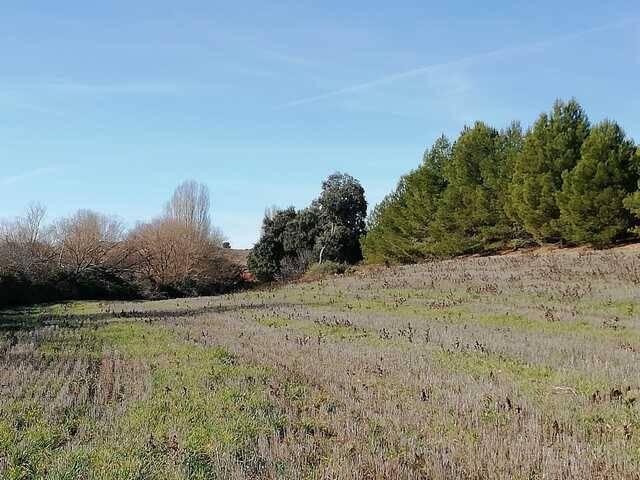 imagen 1 de Venta de finca en Villagordo de Cabriel (Valencia)