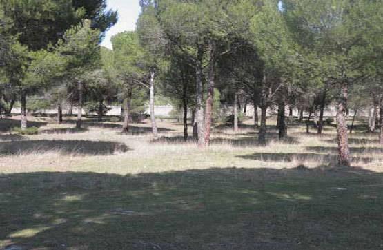 imagen 1 de Venta o alquiler de parcela en Alcazarén (Valladolid)