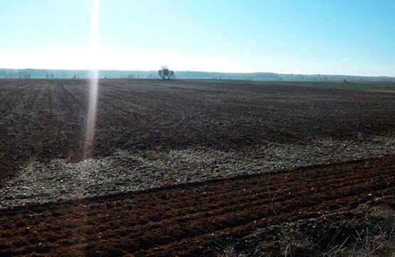 imagen 1 de Venta de parcela en Saelices de Mayorga (Valladolid)