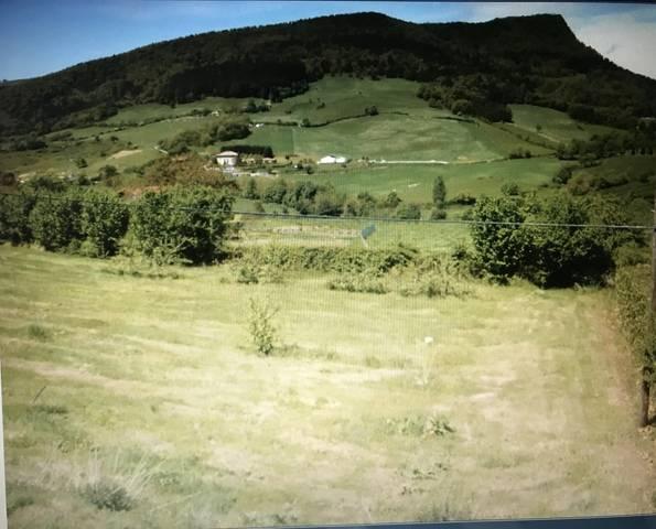 imagen 1 de Venta de finca con bonitas vistas en el Valle de Ayala (Vizcaya)