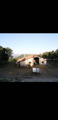 imagen 1 de Venta de finca autosuficiente en Orduña (Bizkaya)