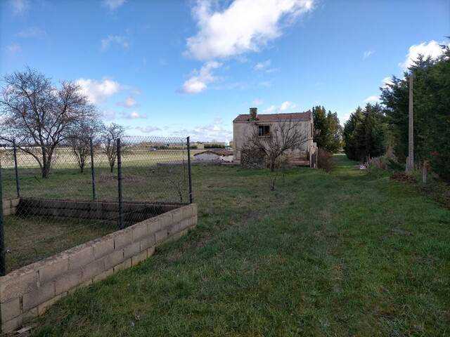 imagen 1 de Venta de finca con casa en Zamora
