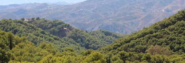imagen 1 de Venta de finca con casa rural en Málaga
