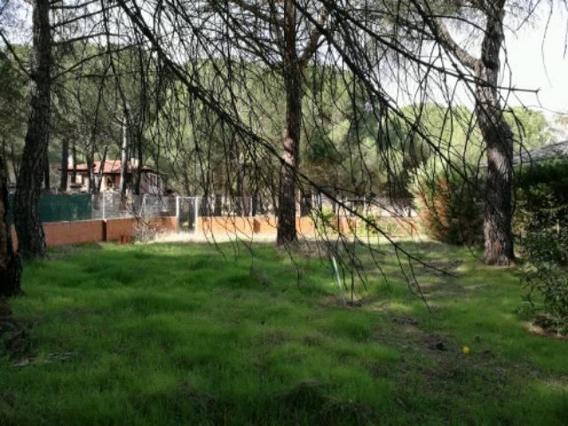 imagen 1 de Venta de finca de recreo en Tudela de Duero