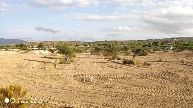 imagen 1 de Venta de parcela edificable en Molina de Segura