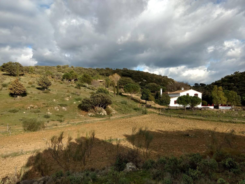 imagen 1 de Cortijo Andaluz y Bungalow en Málaga