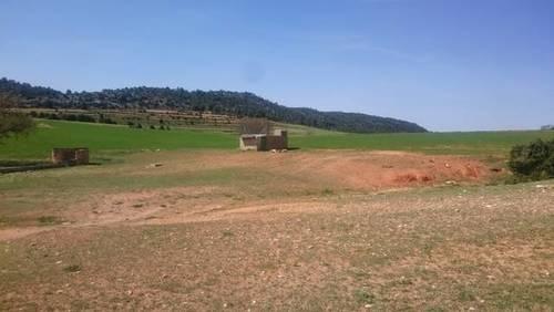 imagen 4 de Venta o alquiler finca en Letur (Albacete)