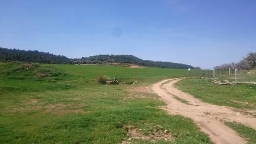imagen 2 de Venta o alquiler finca en Letur (Albacete)