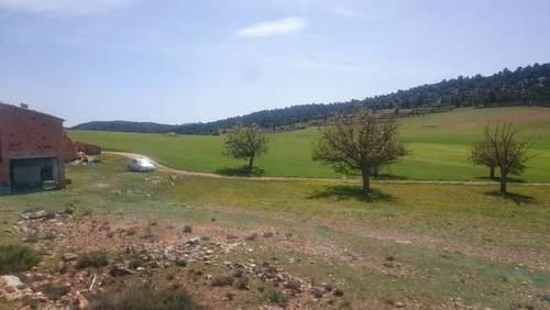 imagen 5 de Venta o alquiler finca en Letur (Albacete)
