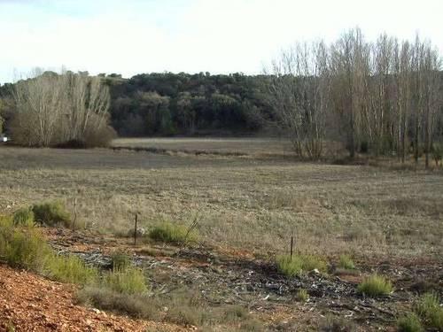 imagen 2 de Finca de caza en Ossa De Montiel (ALBACETE)