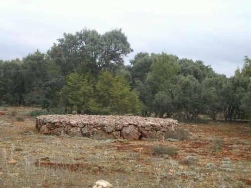 imagen 4 de Finca de caza en Ossa De Montiel (ALBACETE)