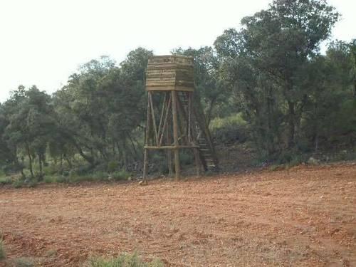 imagen 5 de Finca de caza en Ossa De Montiel (ALBACETE)