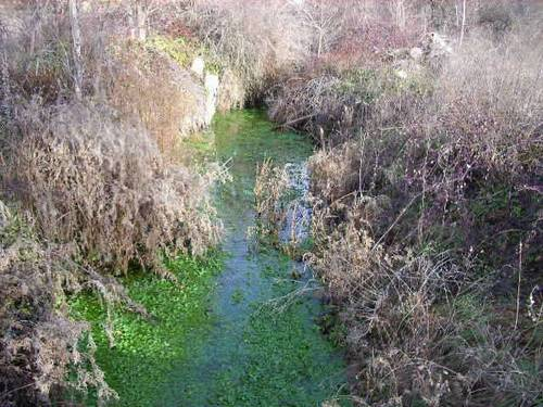 imagen 8 de Finca de caza en Ossa De Montiel (ALBACETE)