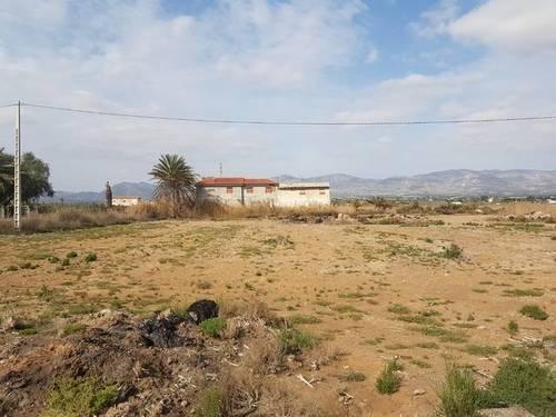 imagen 1 de Finca en Torrevieja