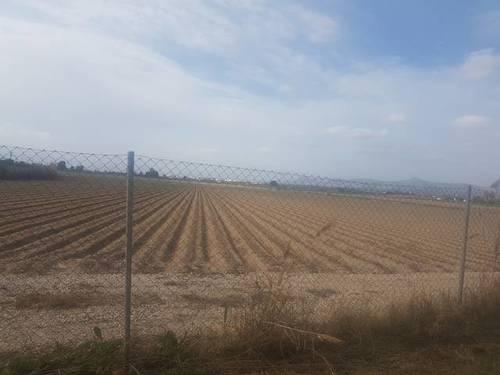 imagen 2 de Finca en Torrevieja