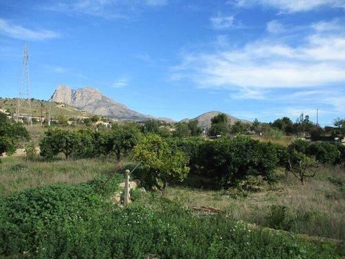 imagen 1 de Venta de finca en La Villajoyosa/vila Joiosa
