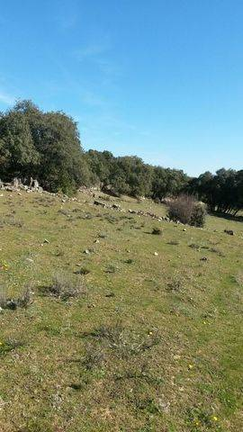 imagen 4 de Terreno Guadalix de la Sierra Madrid