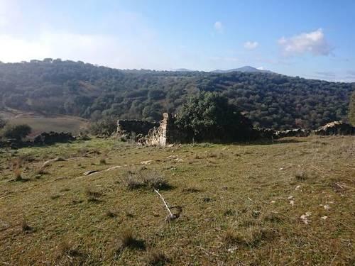 imagen 7 de Terreno Guadalix de la Sierra M627 Venturada