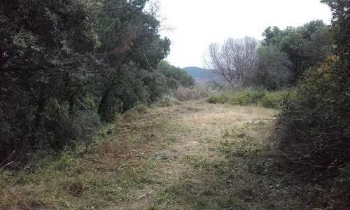imagen 6 de Terreno Camí del Pollastre Arenys De Munt Barcelona
