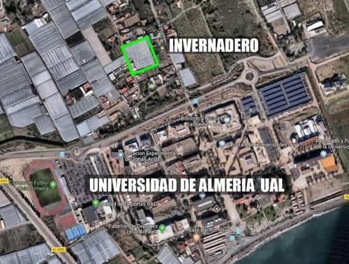 imagen 7 de Invernadero La cañada Almeria