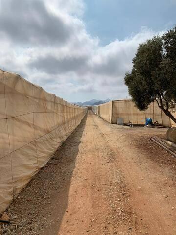 imagen 3 de Invernadero Carretera Níjar-San Jose Almeria