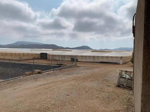 imagen 2 de Invernadero Carretera Níjar-San Jose Almeria