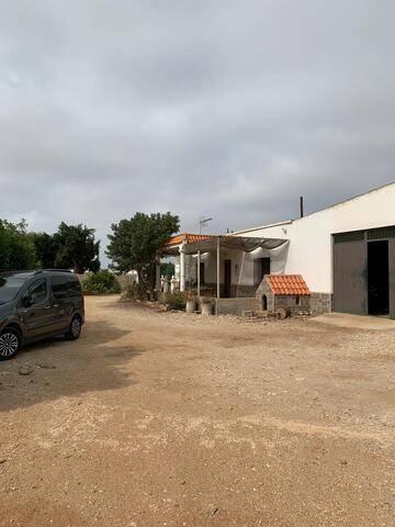 imagen 4 de Invernadero Carretera Níjar-San Jose Almeria