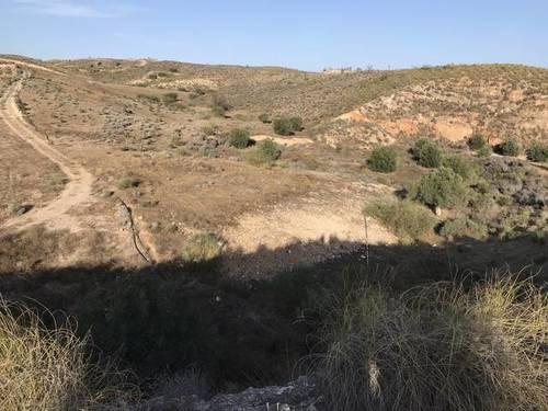 imagen 2 de Terreno para invernadero Sorbas/Lubrin KM4, Almeria