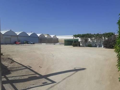 imagen 2 de Invernadero Níjar, Almeria