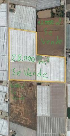 imagen 4 de Invernadero El Barranquete Almeria