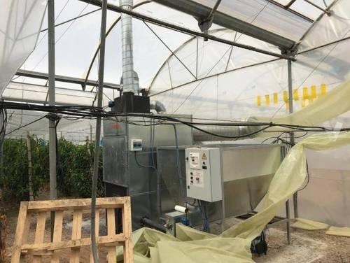 imagen 5 de Invernadero multitunel en Motril