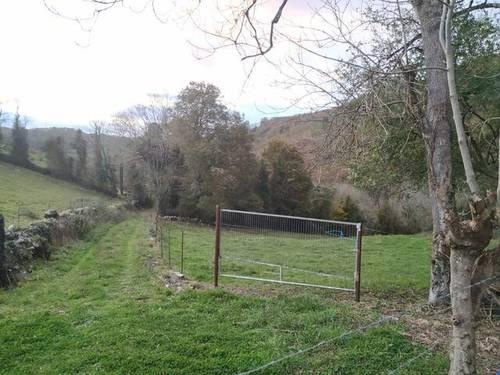 imagen 2 de Terreno para ganado en Oviedo